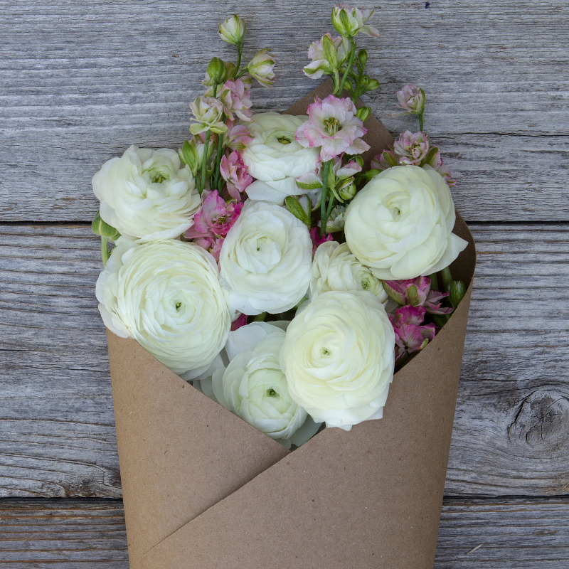 White Ranunculus and Pink Metiola Provence